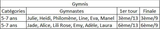 Competitions 2018 2019 gymnis ce
